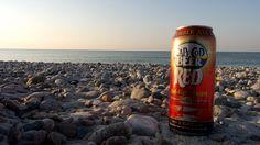 """Moment fraîcheur en sirotant une Cape Cod Beer Red à Sandy Beach - Carnet de voyage """"Amérique, côte Est"""""""