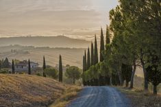 Fotoreise in die Toskana. Wer möchte seine Landschaftsfotos verbessern und unter dem wachsamen Auge einer Fotografin dazulernen? Natural Beauty, Cool Photos, I Am Awesome, Collage, Mountains, Landscape, Travel, Europe, Nice Things