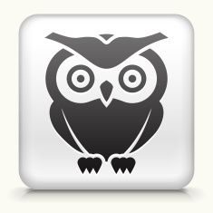 Square Button with Owl vector art illustration