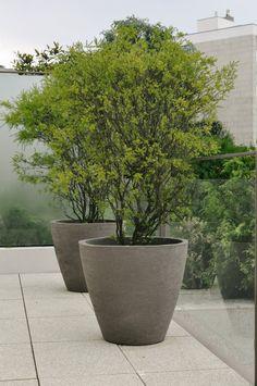joseantonioandradeinteriors-outdoordesign-2.jpg