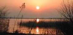 Lago Biwa, el más grande y antiguo de Japón - http://www.absolutjapon.com/lago-biwa-el-mas-grande-y-antiguo-de-japon/