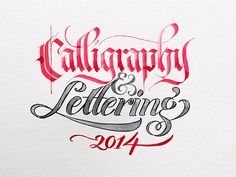 https://www.behance.net/gallery/23345767/Calligraphy-Lettering-Collection-2014?utm_medium=email