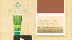 What are the Benefits of Aloe Vera Shampoo? Aloe Vera Shampoo, Cosmetics Industry, Benefit, Presentation