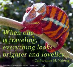 When one is traveling, everything looks brighter and lovelier   Inspirational Travel Quotes from Savored Journeys