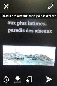 """Au sein de l'espace d'exposition """"Bretagne 1001 images"""" au musée de Bretagne. Les adolescents sont étonnés par cette peinture: """"Mais pourquoi parler de """"Paradis des oiseaux"""" alors qu'il n'y a même pas d'arbres...?"""" L'œuvre : Il s'agit de l'île Callot, une île bretonne située en face du port de Carantec, peinte par le breton Mathurin Méheut."""