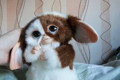 Gizmo Magwai gremlins by MyOriginalArtDolls on Etsy