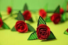 Grullas en la Ventana: Rosas cartulina