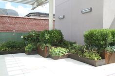 green roof planters - Google Search