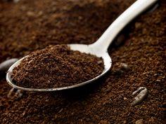 Limpeza, adubo, auxiliar para espantar formigas... O pó de café usado possui diversas utilidades, confira!