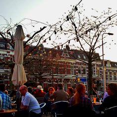 Frowijn (Nijmegen, Nederland)