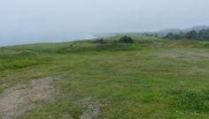 SingleMalt-CapeBreton-NorvellHimself: Foggy At The Mointeach Also