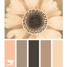 all kinds of color palette ideas for our new place! love these colors for the living room or bedroom- petaled tones all kinds of color palette ideas for our new… Design Seeds, Colour Schemes, Color Combos, Colour Palettes, Pantone, Do It Yourself Design, Color Palate, Colour Board, Color Swatches
