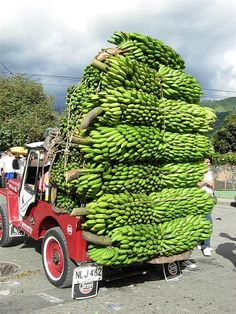 Productos Agrícolas: Es la categoría en la cual los participantes tienen que cargar de la forma mas exagerada sus Jeeps con yuca, maíz, plátano, café, naranja, limón, etc.