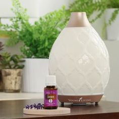 The Desert Mist Essential Oil Diffuser, much like an essential oil humidifier, provides a strong mist to fill your home. An essential oil diffuser that goes beyond use only, with a great Moroccan trellis design.
