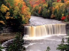 http://travelerhubs.hubpages.com/hub/Tahquamenon-falls-state-park