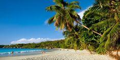 ab 1558 € -- Segelkreuzfahrt auf Seychellen mit Flug, -500 €