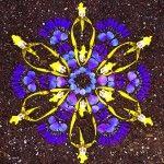 Mandala made from flowers