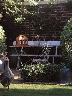 vu dans le livre jardin vintage de sally coulthard