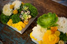 green, yellow, succulents and craspedia - who could ask for anything more?