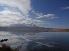 Lagunas Antiplânicas