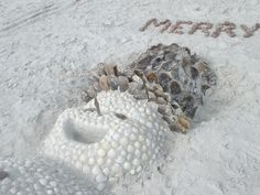A Sanibel Christmas would be the perfect birthday gift, as I was born on Christmas day!