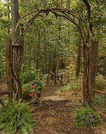 Beautiful arch for the garden made with fallen trees and muscadine vines pulled from the trees....I want this in my yard!