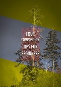 Four Composition Tips for Beginners - Photography Roundtable