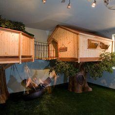 Indoor Tree House Design with bridge