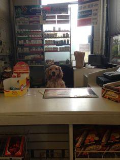 New cashier at work - Imgur