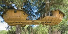Double Octagon Tree House with Bridge