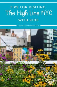 Tips for visiting the High Line NYC with kids, including amenities, entrances, what is allowed, and what you'll see on this elevated public park. Nyc With Kids, Travel With Kids, Family Travel, New York Travel, Travel Usa, Travel Tips, Travel Destinations, Highline Nyc, Park In New York