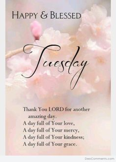 Happy And Blessed Tuesday Tuesday Quotes Good Morning, Happy Tuesday Quotes, Morning Greetings Quotes, Good Morning Messages, Good Morning Good Night, Good Morning Wishes, Morning Sayings, Happy Friday, Morning Blessings