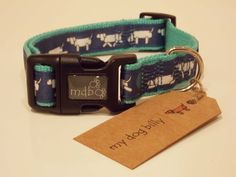 Walking Dog Collar (Medium)