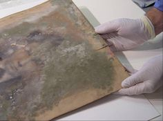 Paper Conservation - Mold Removal and Treatment