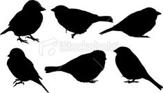 Bird silhouettes ~ well, of course I love this!For Bonny's blanket.
