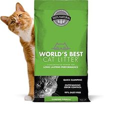 The messiest job in cat care just got easier, with Clumping formula, the flushable* cat litter with outstanding odor control and tight clumping ability. This quick-clumping, easy-scooping solution Natural Cat Litter, Best Cat Litter, Cat Litter Mat, Litter Box, Flushable Cat Litter, Cat Litter Brands, Cat Care Tips, Pet Tips, Shopping