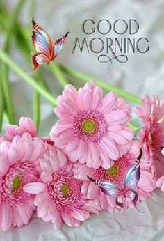 Good Morning Sister and all,wishing you a good day,God bless xxx take care and keep safe,❤❤❤🍀❄🍀 Cute Good Morning Quotes, Good Morning Beautiful Images, Good Afternoon Quotes, Good Morning Images Hd, Good Morning Picture, Good Morning Good Night, Morning Pictures, Good Morning Wishes, Good Morning Tuesday