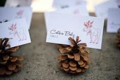 Pinecone place card holders; rustic wedding