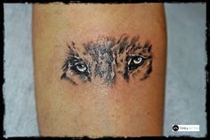 Tatuaż oczy wilka - wykonanie TIME4TATTOO www.time4tattoo.pl #tatuazoczywilka #tatuazwilk #oczywilka #tatuazwszarościach #eyeofawolftattoo #wolftattoo #b&gtattoo #time4tattoo