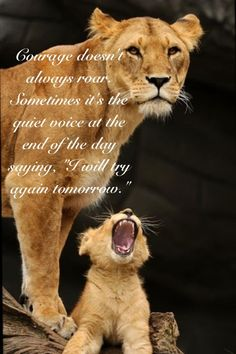 Lioness Quotes Women Courage