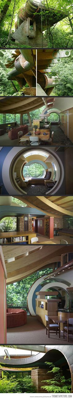 A spaceship in the forest.. (Organic Architect Robert Oshatz's house. Portland, Oregon ) #awesome #house #treehouse #special