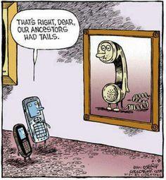 Funny & true