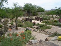 A stepping stone path strolls past hearty shrubs in this large desert yard. A bridge over a dry creek bed in the center of the yard makes a nice viewing spot. The path is lighted for night use. Picture compliments of www.desertcrestllc.com