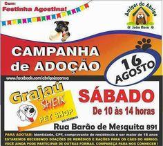 Bonde da Bardot: RJ: ADOÇÃO DE ANIMAIS NESTE SÁBADO (16/08) NO GRAJ...