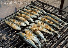 Grilled Portugese Sardines