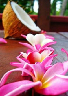 The sweetest things in life - #plumeria #coconuts #islandlife #islandlifestyle