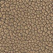 Surface Mojave 38