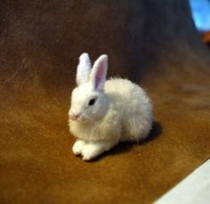 Brown and White Rabbits. Hand Sculpted with real hair by: Linda Fisher Felt Animals, Animals And Pets, Art And Craft Materials, Scale Art, Needle Felting Tutorials, White Rabbits, Animal Cruelty, Dollhouses, Pet Birds