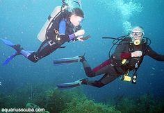 Diving in Honduras, Roatan Honduras Roatan, Diving, Sci Fi, Fictional Characters, Art, Art Background, Science Fiction, Scuba Diving, Kunst