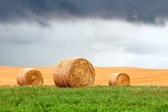 Bales and Layers Straw Bales, Youtube I, My Face Book, Montana, Layers, About Me Blog, Facebook, Website, Twitter